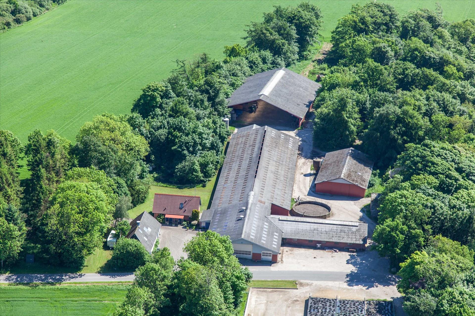 Planteavlsgårde/landbrugsjord til Salg - Gåsblokvej 5, m.fl, 6240 Løgumkloster